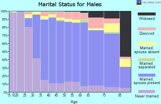 Leake County marital status for males