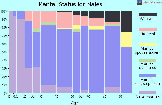 Twin Falls County marital status for males