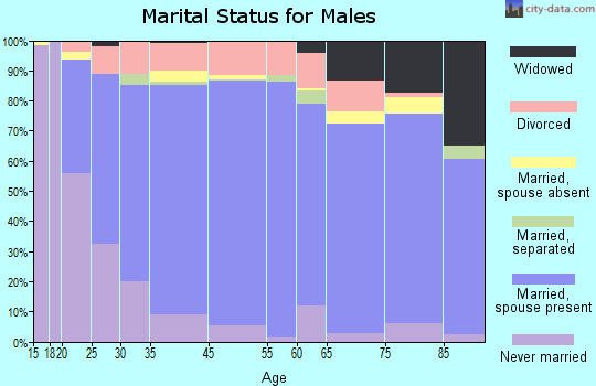 Lyon County marital status for males