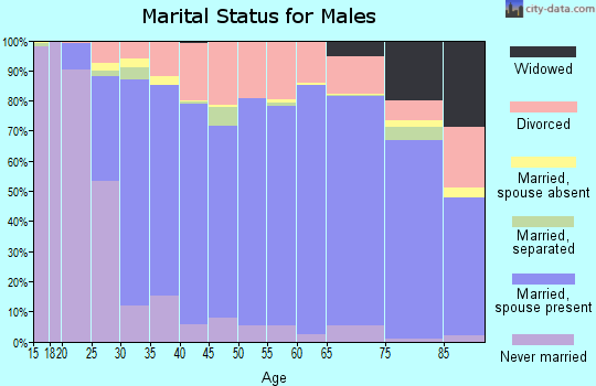Spartanburg County marital status for males