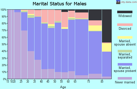 McLeod County marital status for males