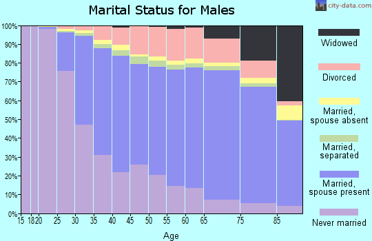Audrain County marital status for males