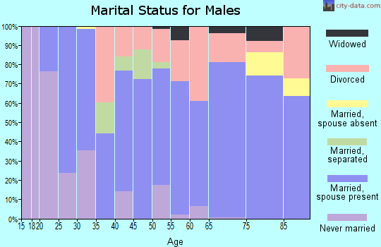 Mifflin County marital status for males