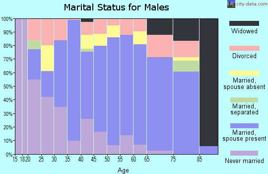 Ashtabula County marital status for males