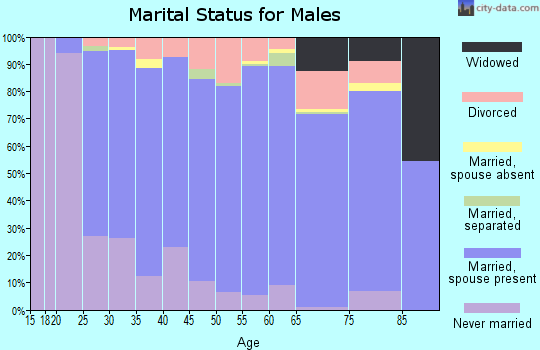 Stutsman County marital status for males