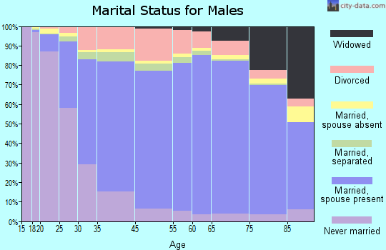 Stillwater County marital status for males