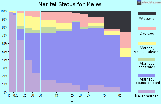 Marion County marital status for males