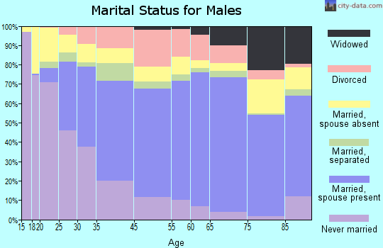 Portage County marital status for males