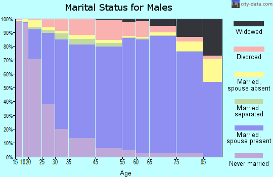 Palm Beach County marital status for males