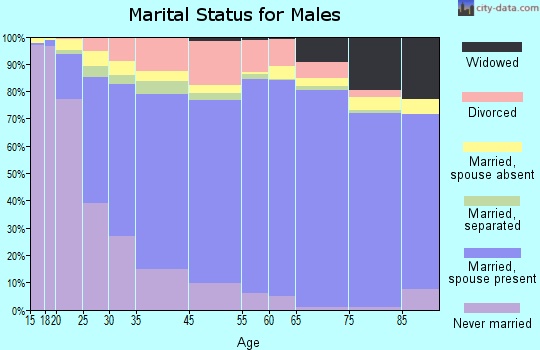 Macomb County marital status for males