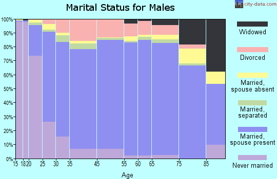Manistee County marital status for males