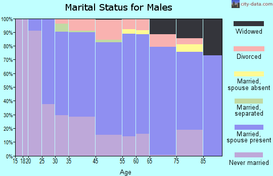 Rio Blanco County marital status for males