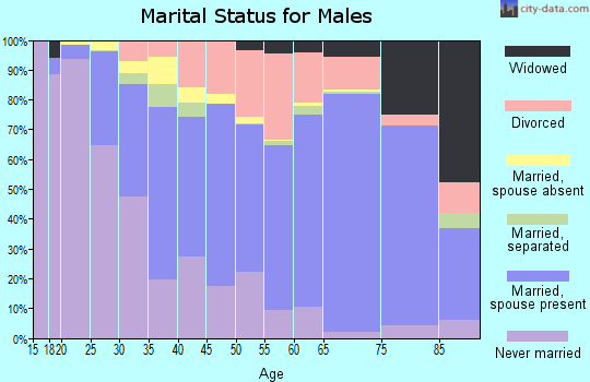 Johnson County marital status for males