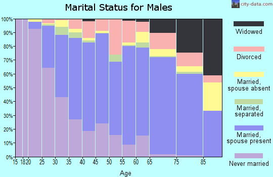 Henry County marital status for males