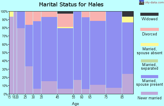 Nicollet County marital status for males