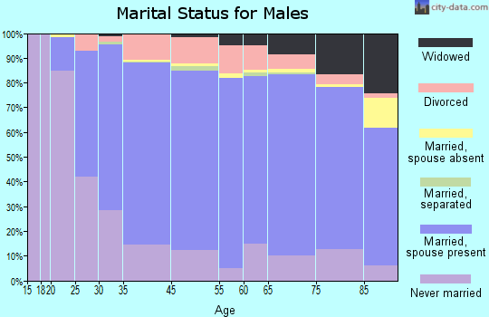 Medina County marital status for males