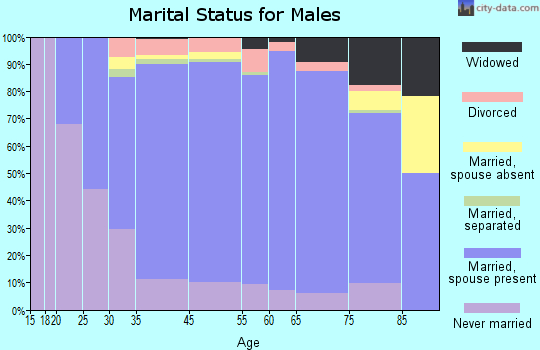 Noble County marital status for males