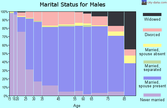 Wirt County marital status for males