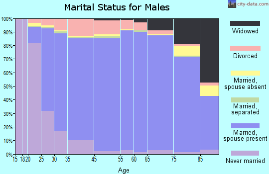 Norman County marital status for males