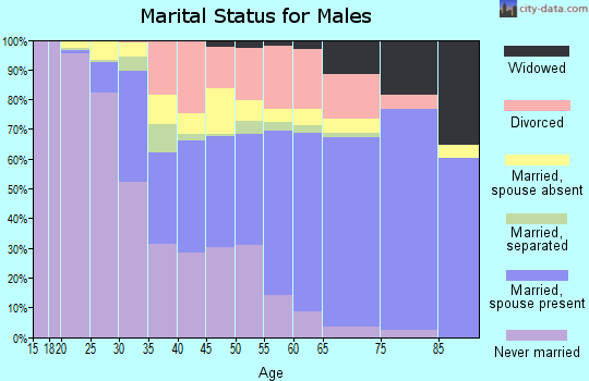 McMinn County marital status for males