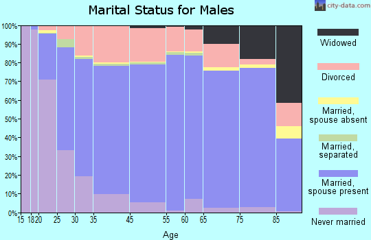 Saguache County marital status for males