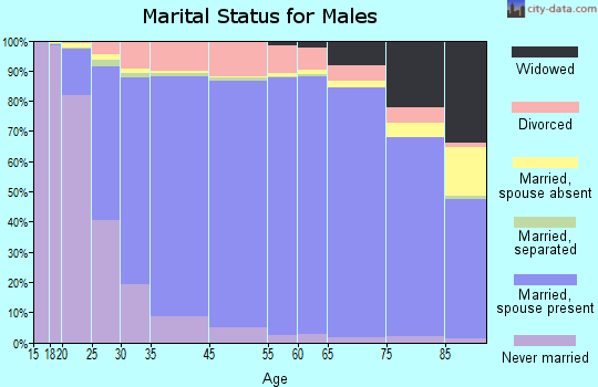 Logan County marital status for males