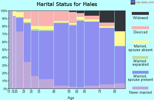 Midland County marital status for males