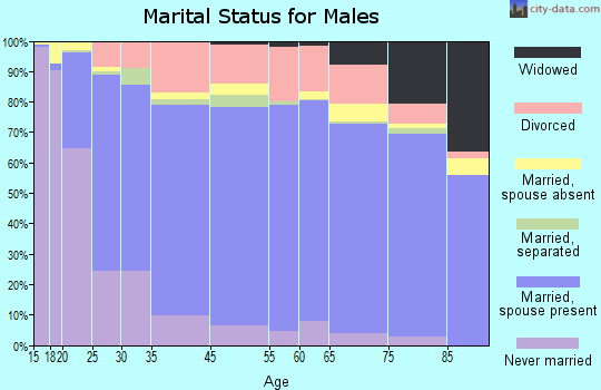 Lunenburg County marital status for males