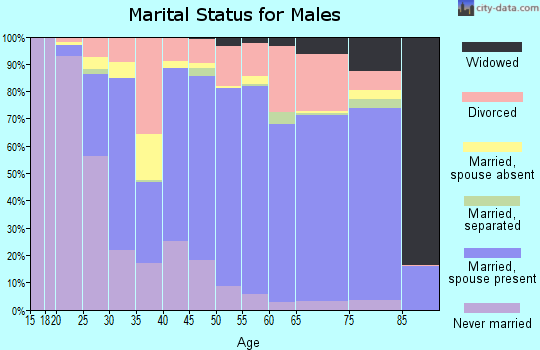 Idaho County marital status for males
