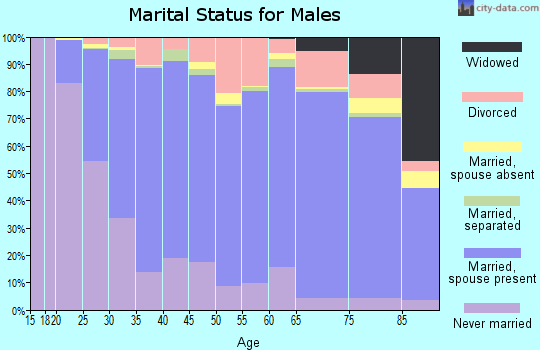 Sawyer County marital status for males