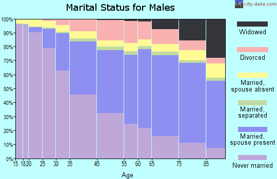 Barry County marital status for males