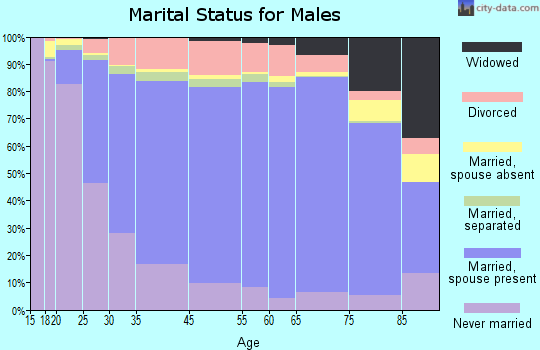 Maury County marital status for males