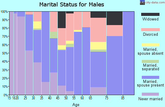 Warren County marital status for males