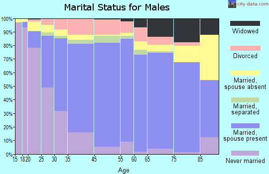 Dimmit County marital status for males