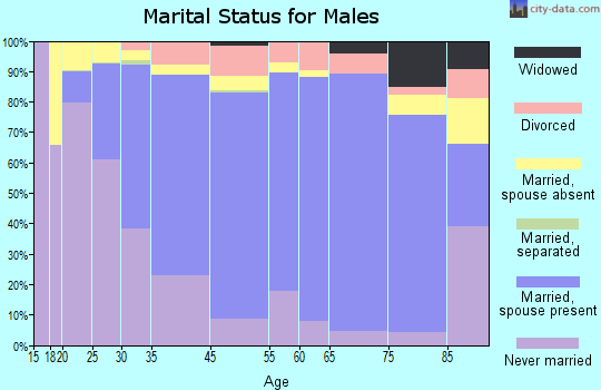 New Hanover County marital status for males