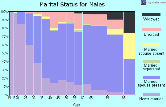 Amherst County marital status for males