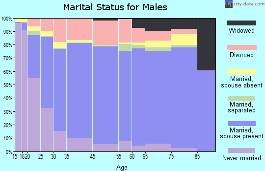 Otsego County marital status for males