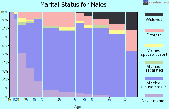 Peoria County marital status for males
