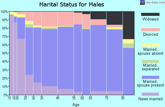 Sibley County marital status for males