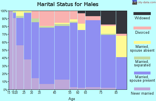 Saginaw County marital status for males