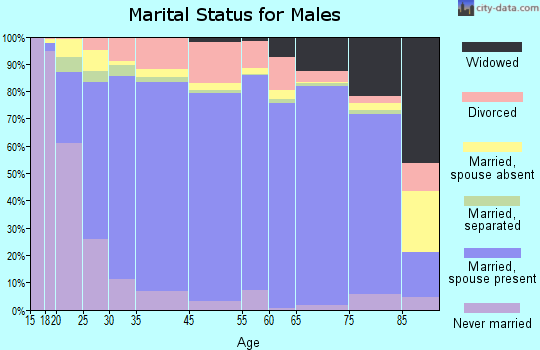 Steele County marital status for males