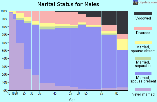 Pope County marital status for males