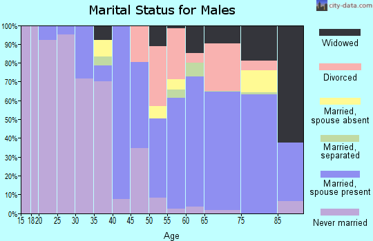 Magoffin County marital status for males