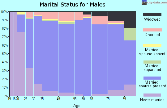 Bath County marital status for males