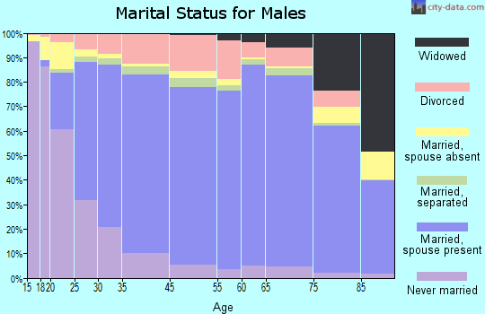 Irwin County marital status for males