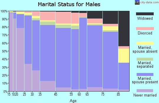 Wabasha County marital status for males
