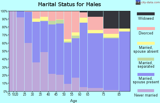 Shelby County marital status for males
