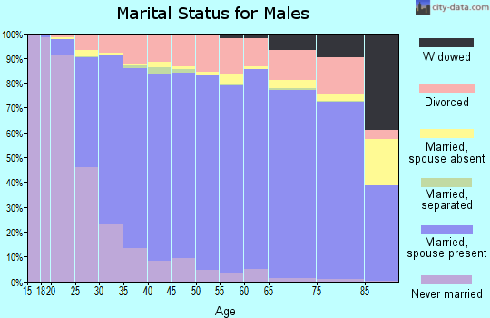 Hendricks County marital status for males