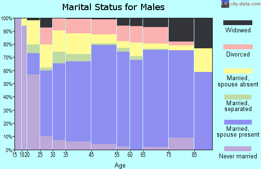 Hillsborough County marital status for males