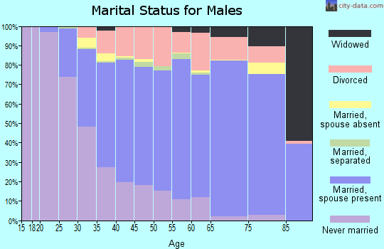 Scott County marital status for males